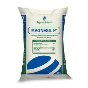 Magnesil P